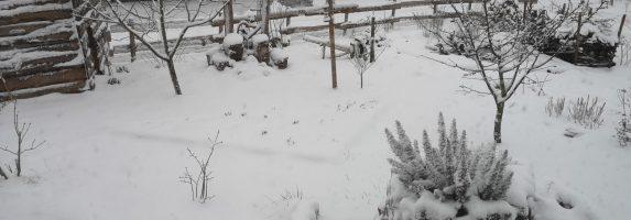 28. Februar 2020 – Gestern Schnee, heute Sonne im Hortus Civitas Ursi