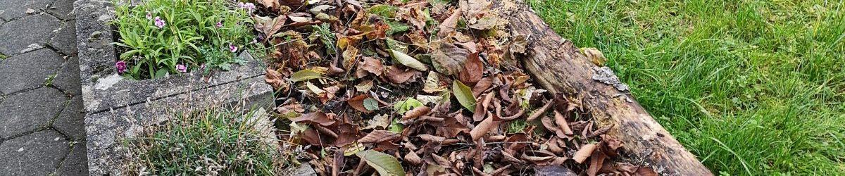 23. November 2019 – Das Waldbeet erhält eine Blätterdecke