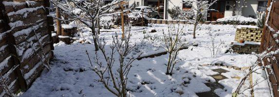 22. März 2020 – Und doch nochmal Schnee im Hortus Civitas Ursi